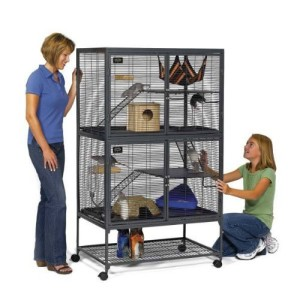 critter nation double cage