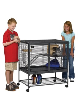 critter nation single cage